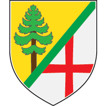 Arms of Bor
