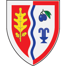 Arms of Ljig