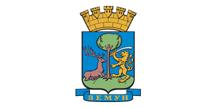 zemun-zastava-2009.png