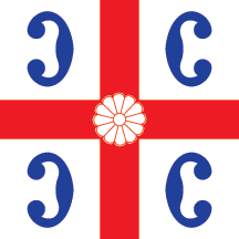 Flag of Surdulica
